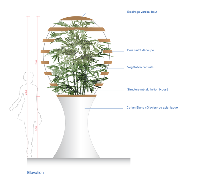 conf_totem vegetal_version 2_fini_web-modif_seul-01_web-3